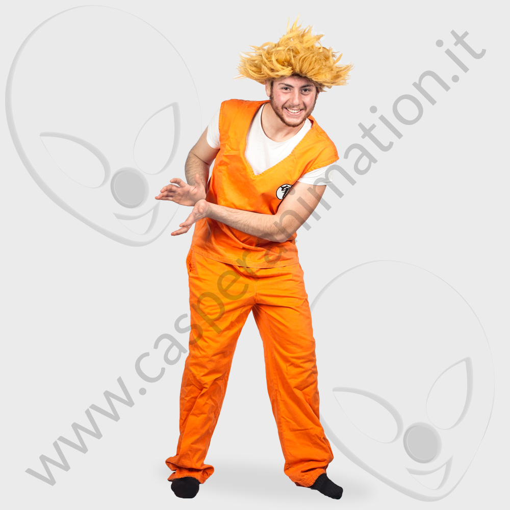 Costume Dragon Ball GOKU